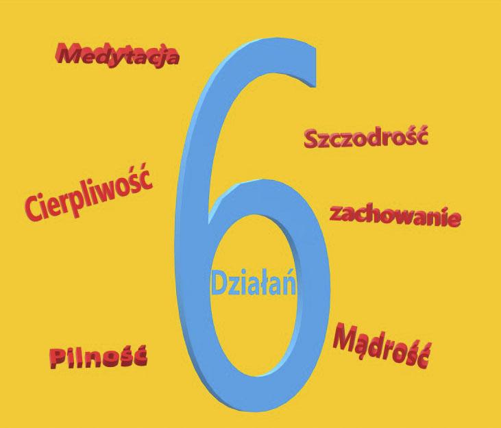 6 działań